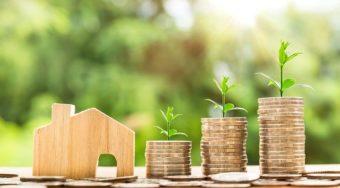 Em tempos de Covid-19, como agregamos valor à nossa propriedade??